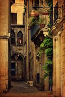Bordeaux street view by ralucsernatoni
