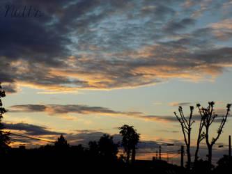 Golden clouds 1 by Nuttestla