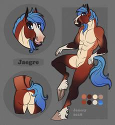 Jaegre Ref Sheet by CrazyGraeHawkatoo