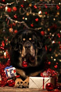 .:Merry Christmas:. by SaNNaS
