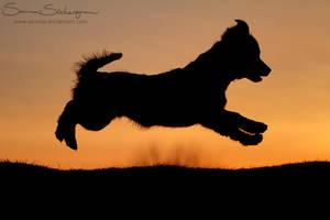Sunset takeoff by SaNNaS