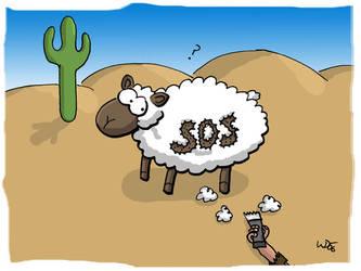 SOS Sheep by 5dave