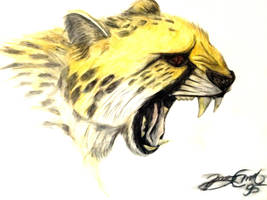 Cheetah by JonasEklundh