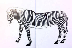 Long Zebra is long by JonasEklundh