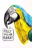 Polly wants a cracker by JonasEklundh