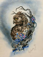 Cute Owl  by ColdEver