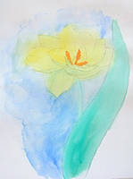 Tulip by Lucyndaria
