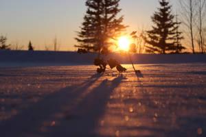 glitter at sunset by xdancingintherain