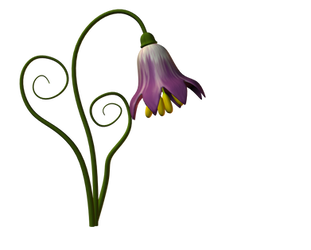 Flower 01 by Ecathe