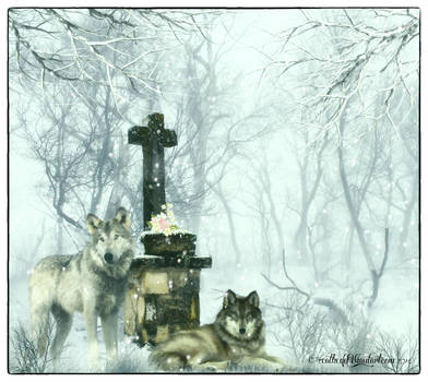 Winter spirit wallpaper by Ecathe