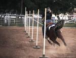 Pole Bending by BarrelRacer93