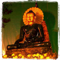 Jade Buddha for Universal Peace by TripleGemini