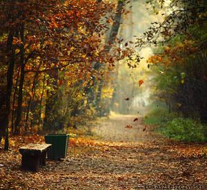 Falling Leaves. by lemon66
