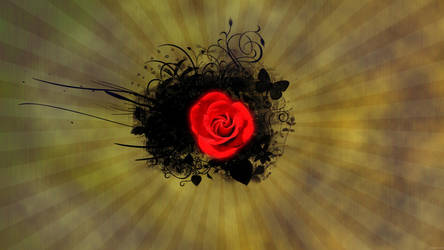 Rose Wallpaper by pointman1968