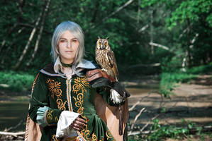 owl by Faeryx13