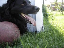 Eli's Jolly Ball by TegrofReven
