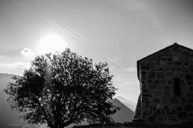 Silence by eileenel