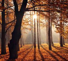 autumn morning 2 by alexandrdeviant