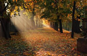 autumn morning 17 by alexandrdeviant