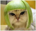 melon-head by ishu11
