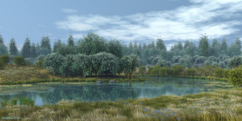 The lake in the old park by slepalex