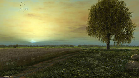 Lonely oak at sunset by slepalex