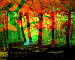 Dream Forest  by Zoluki