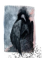 Crow by AsyaYordanova