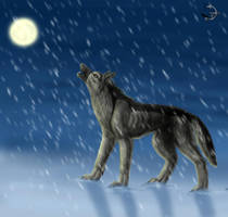 Moon cold by BullTerrierKa
