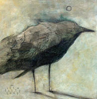 Crow Bird in Light by SethFitts