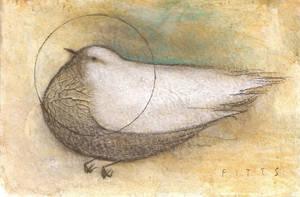 White Bird with Halo by SethFitts