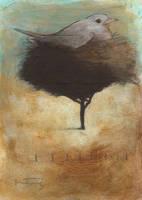 Nesting Bird by SethFitts