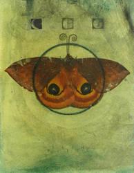 Moth: Phase by SethFitts