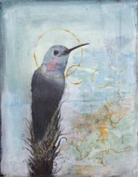 Sky Watcher by SethFitts