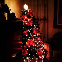 Merry Christmas  by BluetomDraws