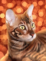 Toyger [+speedpaint] by Martith