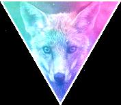 Triangle decor - Galaxy fox by Martith