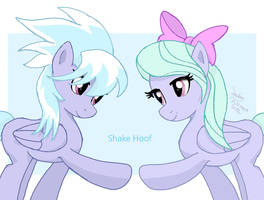 MLP FIM - Cloudchaser and Flitter by Joakaha