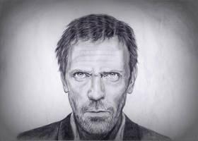 Hugh Laurie by Annesaar