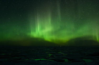 Aurora by Cussypat