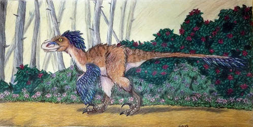 Utahraptor by Bluecrest-Rubenaris