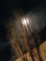 Full Moon by Bluecrest-Rubenaris