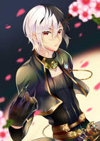cm: Lucian by Sukihi