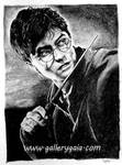 Harry Potter by GalleryGaia