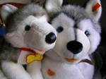 Sascha And Kody by WildSpiritWolf