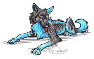 Playful Zumi Wolf Mini Picture by WildSpiritWolf