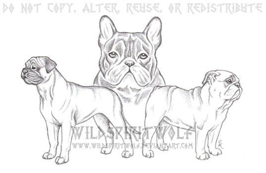 Three Dog Breed Shaded Sketch by WildSpiritWolf
