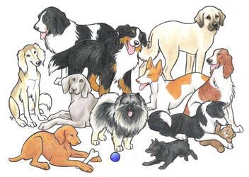 Dog Breed Contest DONE by WildSpiritWolf
