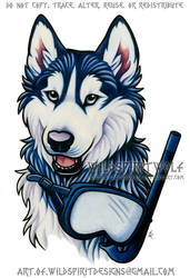 Black + White UConn Husky Mascot - Color Design by WildSpiritWolf