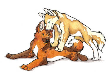 Wild Dogs Commission by WildSpiritWolf